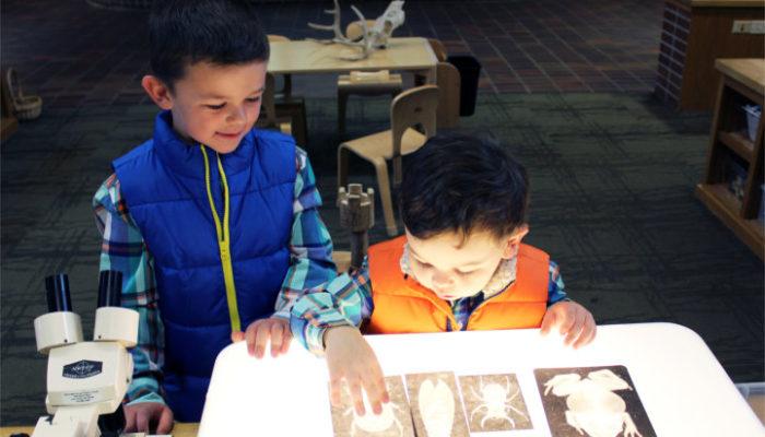 Bensons_Adventures_Childrens_Book_Chippewa_Nature_Center_Midland