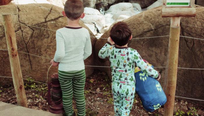 Bensons_Adventures_Michigan_Potter_Park_Zoo