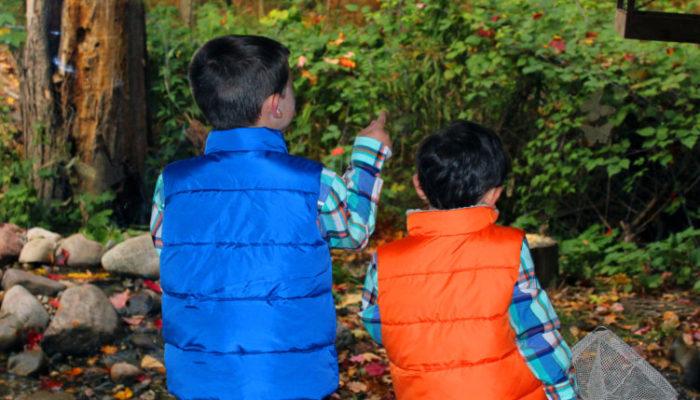 Chippewa_Nature_Center_Midland_Childrens_Book